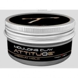 ATTITUDE Moulding Clay 100ml